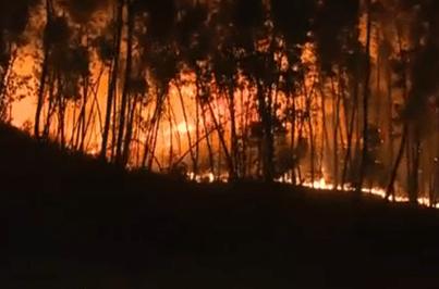 Quatro distritos em risco máximo de incêndio