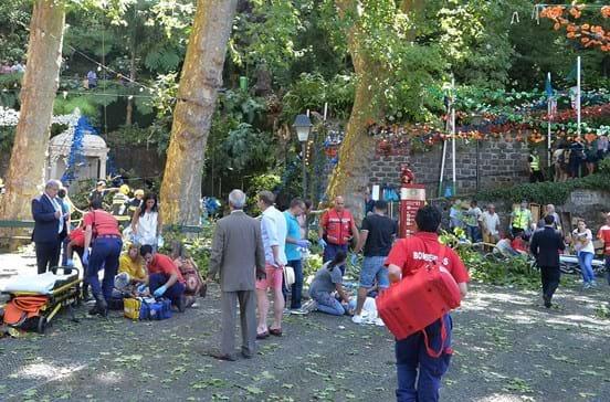 Famílias exigem saber de quem é a árvore que causou a tragédia na Madeira