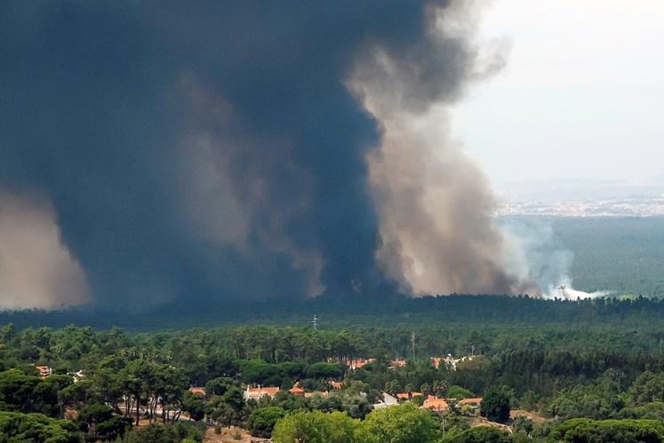 Mais de 100 bombeiros e seis meios aéreos combatem incêndio em Sesimbra
