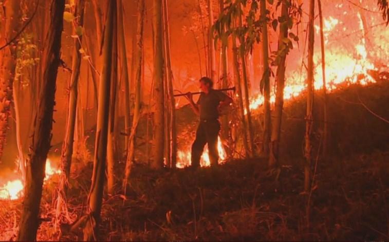 Três fogos em curso e dois em resolução mobilizam 1.434 operacionais — Incêndios