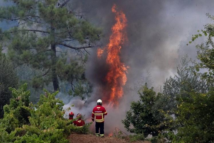 Novo máximo de 268 fogos registado no sábado — Incêndios