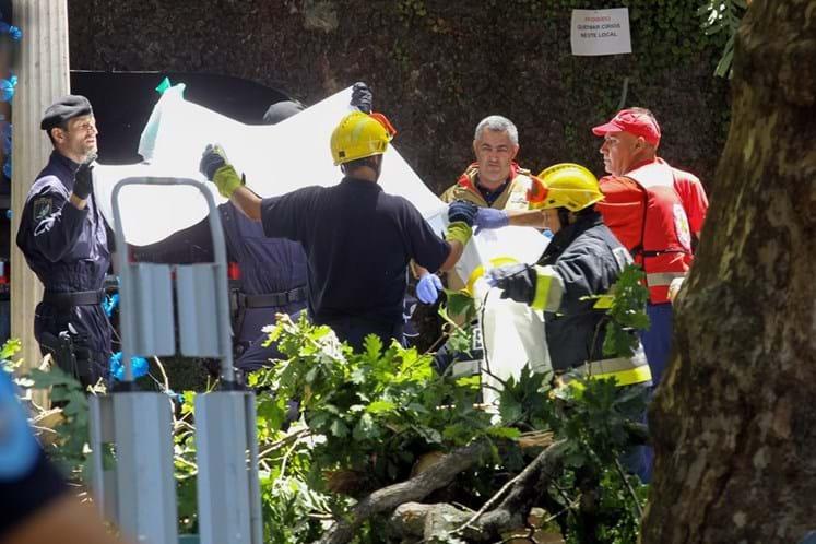 Queda de árvore no Funchal causou 12 mortos — Ao minuto