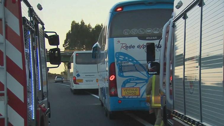 Choque entre autocarro e camião na A1: um morto e 31 feridos