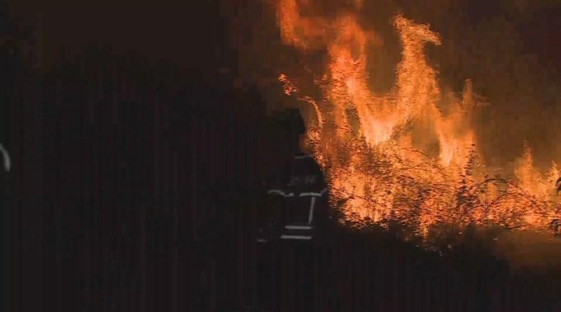 Resultado de imagem para Mais de 50 concelhos de 12 distritos em risco `máximo` de incêndio