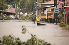 Furacão 'Maria' arrasa Dominica e Guadalupe