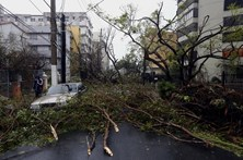 Furacão Maria fez pelo menos 15 mortos na ilha de Dominica