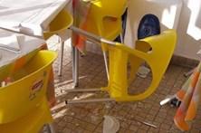 Javalis atacam restaurante em Setúbal