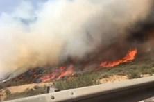Incêndio na ilha Gran Canaria já causou um morto