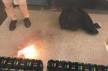 Explosão em estação de metro de Londres