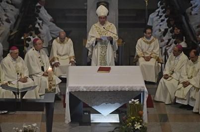 Papa aceita pedido de resignação do Bispo de Viseu por motivos de saúde