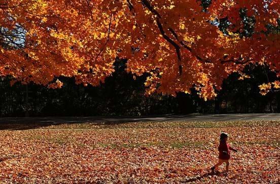 Primeiro fim de semana de outono com temperaturas a atingir os 30 graus