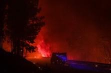 Governo prepara pacote de medidas para matas nacionais afetadas pelos incêndios