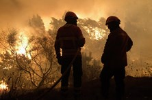 Mais de uma dezena de agrupamentos e escolas continuam sem aulas devido aos incêndios