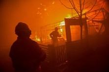 Pelo menos 115 mortos em fogos florestais até 17 de novembro