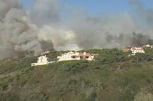 Habitantes de Alcobaça não têm dúvidas que incêndio resultou de fogo posto