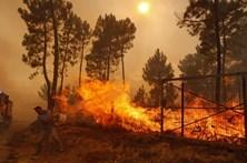 """Sertã faz balanço """"trágico"""" dos fogos e procura soluções para a economia"""
