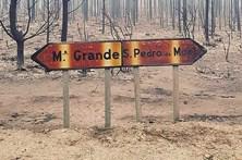 Pinhal do Rei ardeu em fogo devastador