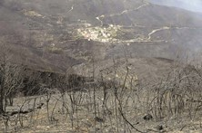 Chamas devoram 520 mil hectares em Portugal