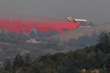 Fogos na Califórnia já mataram 42 pessoas e destruíram 7 mil casas