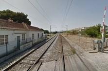 Mulher morre colhida por comboio em Vila Nova da Barquinha