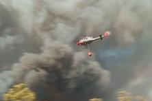 Três concelhos de Faro e Portalegre em risco 'muito elevado' de incêndio