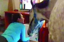 Mulher leva cavalo para o quarto