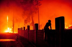 Número de mortos nos fogos sobe para 41