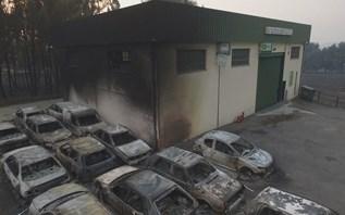 Chamas queimaram mais de 316.000 hectares este ano