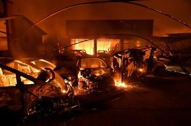 Dezenas de casas e empresas atingidas pelas chamas em Vagos
