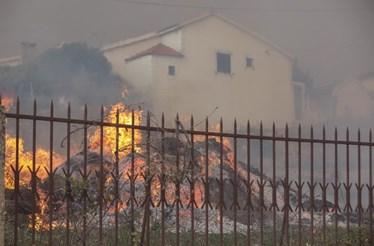 Vila Nova de Poiares com cerca de 70% do território ardido