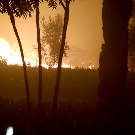 Fogo em Tondela deixa casa cercada pelas chamas