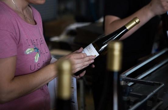 Mostra de vinhos nacionais na Wine Concept Business Day