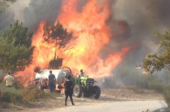 Mais de seis mil hectares de floresta consumido pelo fogo em Monção