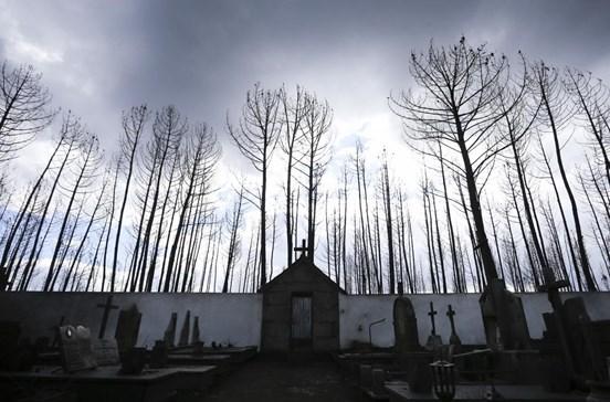 Vítimas dos incêndios de domingo constituem-se em associação