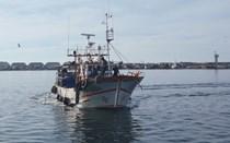 Pescador arrastado por rede para a morte