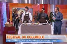 Festival dos Cogumelos