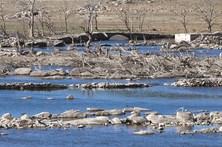 Grandes rios de Portugal secam em Espanha