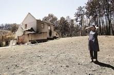 7,7 milhões para terrenos afetados pelos incêndios