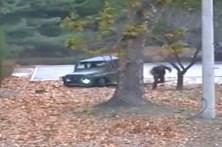 Imagens mostram soldado norte-coreano em fuga a ser baleado