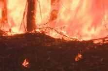 Feridos nos incêndios vão ser indemnizados