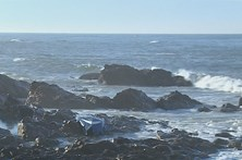 Professora de 36 anos desaparece após naufrágio no Porto