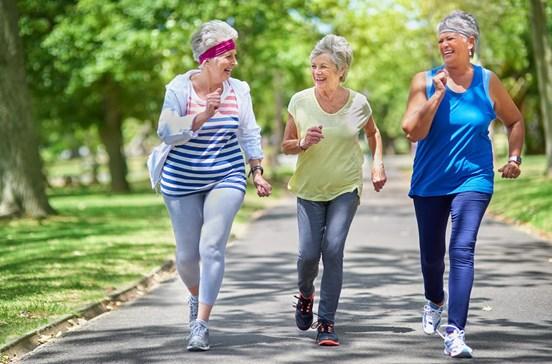 Adoçantes são aliados improváveis da atividade física