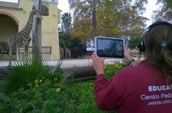 Zoo de Lisboa visitado virtualmente por escolas de todo o mundo