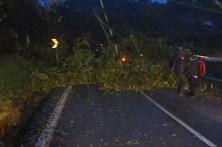 Tempestade Ana deixa rasto de destruição em Portugal