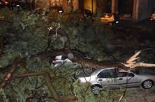 Tempestade Ana faz um morto, cinco feridos e 13 desalojados