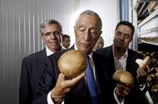 Fábrica de cogumelos que Marcelo aplaudiu está à beira da falência