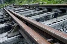 Casal de idosos colhido mortalmente por comboio