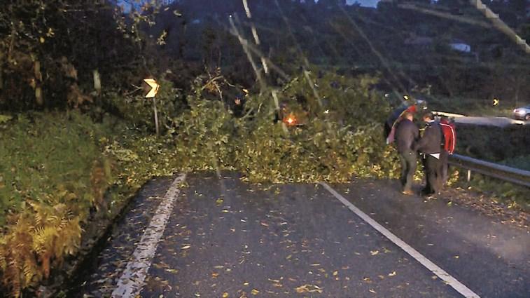 Jovem morre atingida por árvore em Marco de Canaveses