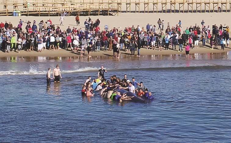 Autoridades e populares salvam baleia na praia de Monte Gordo
