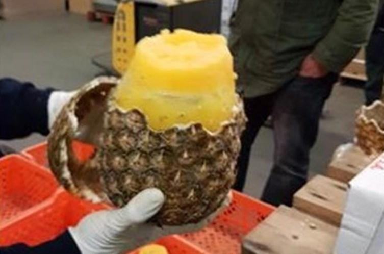 745 quilos de cocaína escondidos no interior de ananases
